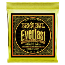 Everlast Coated Bronze Medium Light 12-54