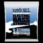 Flatwound Bass 5 String 45-130